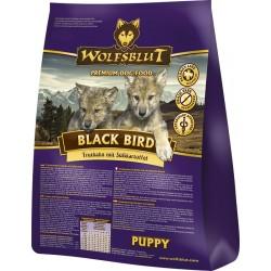 WOLFSBLUT Puppy Black Bird z indykiem i batatami