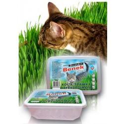 GIMPET Hy Grass 150g