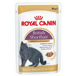ROYAL CANIN CAT British Shorthair saszetka