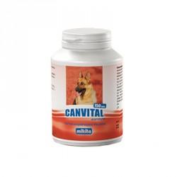 MIKITA DOG Canvital + czosnek 150tab.