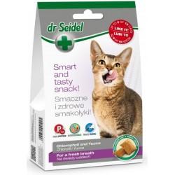 Dr SEIDEL Smakołyki 2w1 dla kota 60g