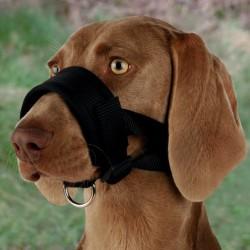 TRIXIE Kaganiec nylonowa pętla dla psa