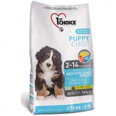 1st CHOICE DOG Puppy Medium&Large