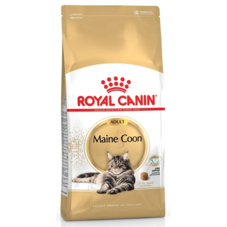 ROYAL CANIN CAT Maine Coon