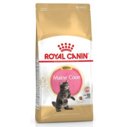 ROYAL CANIN CAT Maine Coon Kitten