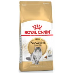 ROYAL CANIN CAT Norwegian Forest Cat