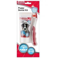 BEAPHAR Puppy Dental Kit 50g + szczoteczka