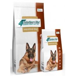 VET PLANET 4T DOG Intestinal