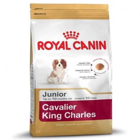 ROYAL CANIN DOG Cavalier King Charles Junior