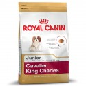 ROYAL CANIN DOG Cavalier King Charles Junior