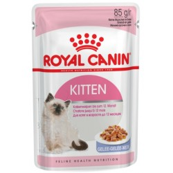 ROYAL CANIN CAT Kitten Instinctive w galaretce saszetka