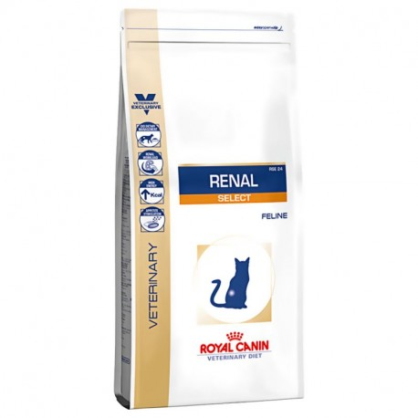 ROYAL CANIN VETERINARY DIET CAT Renal RSF 26