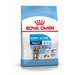 ROYAL CANIN DOG Maxi Junior Active