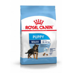 ROYAL CANIN DOG Maxi Junior