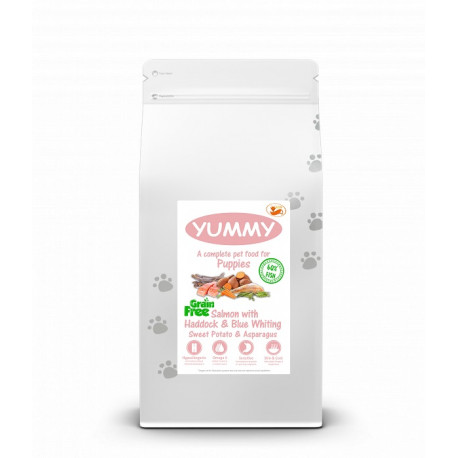 YUMMY Grain Free Dog Salmon