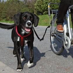 TRIXIE Smycz do roweru dla większego psa