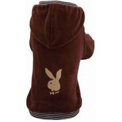 GF Bluza Bunny brązowa