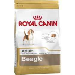 ROYAL CANIN DOG Beagle Adult
