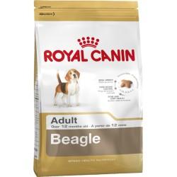 ROYAL CANIN DOG Beagle