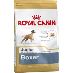 ROYAL CANIN DOG Boxer Junior