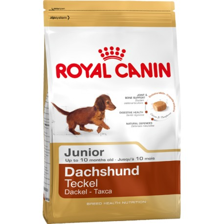 ROYAL CANIN DOG Dachshund Junior
