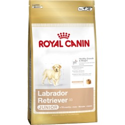 ROYAL CANIN DOG Labrador Retriever Junior