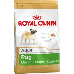 ROYAL CANIN DOG Pug Adult