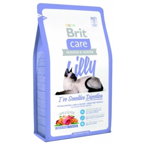 BRIT Care Cat Daisy I've to Control my Weight